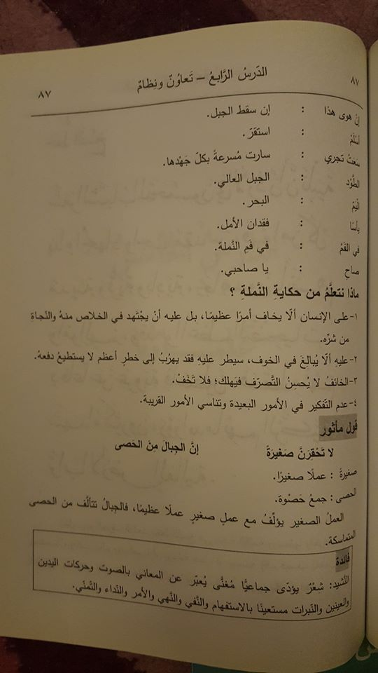 بالصور شرح قصيدة كانت النمله تمشي للشاعر احمد شوقي للصف الرابع الفصل الاول 2017