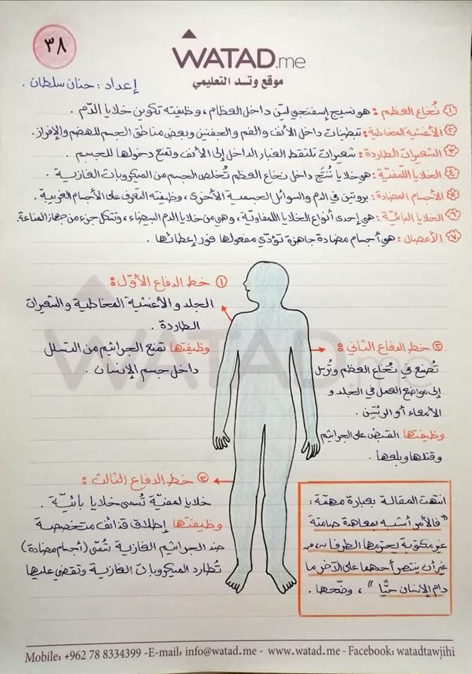 شرح درس المعاهدة الصامته وحدة من عجائب جسم الانسان مادة اللغة العربية للصف التاسع الفصل الاول 2020